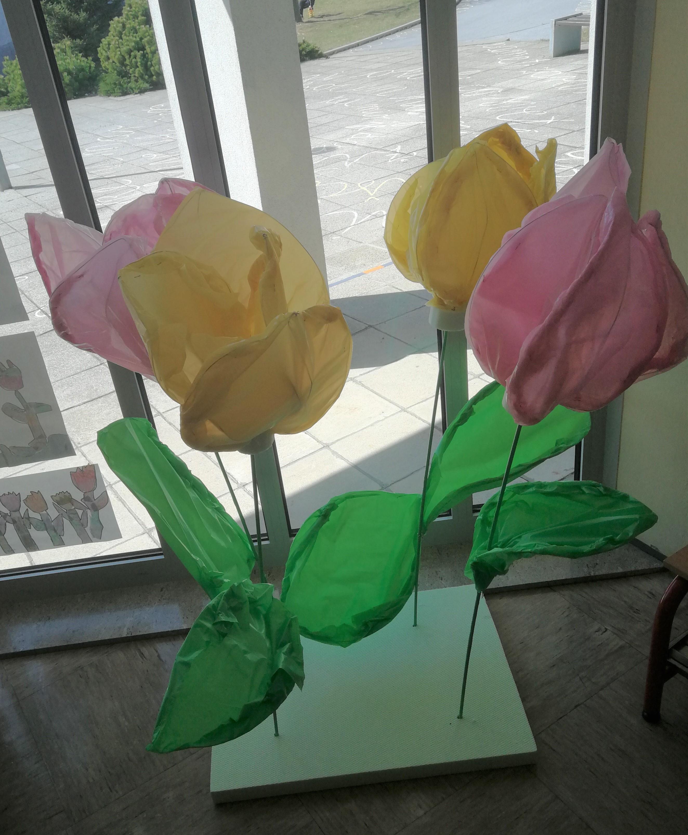 tulipani2